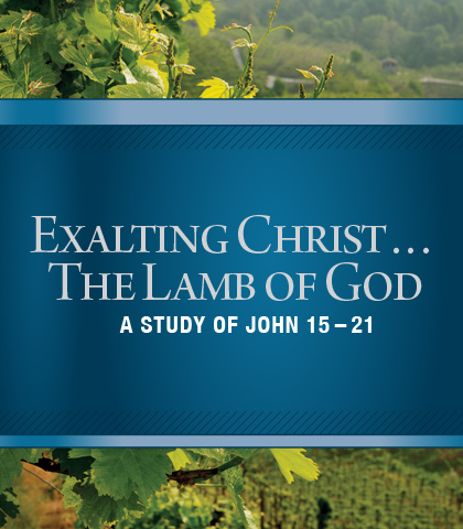 Artwork for Exalting Christ...The Lamb of God: A Study of John 15-21