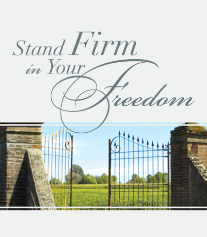 Artwork for Stand Firm in Your Freedom