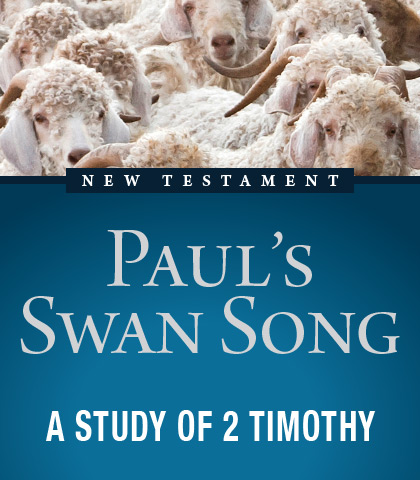 Artwork for Paul's Swan Song: A Study of 2 Timothy