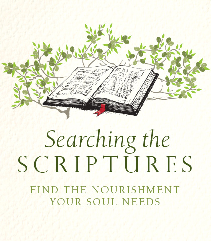 Artwork for Searching the Scriptures: Find the Nourishment Your Soul Needs